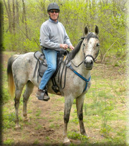 Custom Horse Saddles