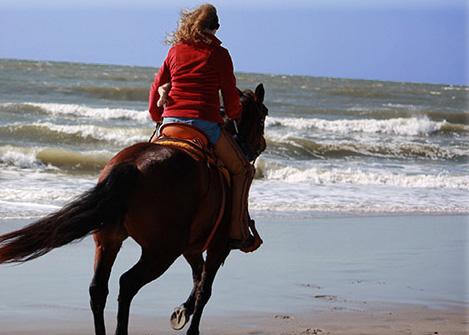 Saddles For Women
