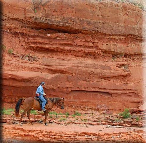 Semi Custom Saddle