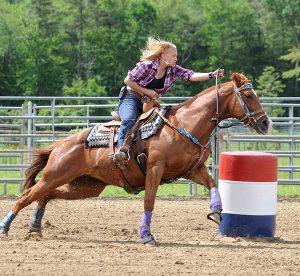 Saddles With Tree vs Treeless Saddles - Synergist Saddles