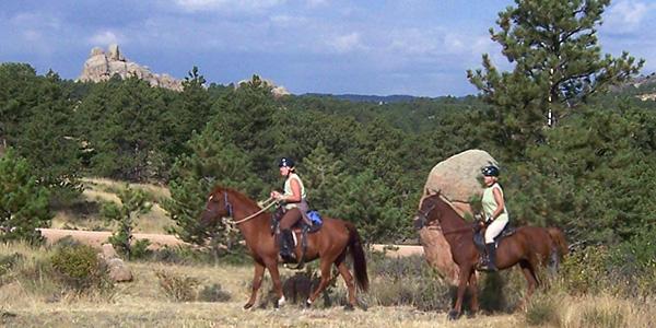 Custom Saddle - Balance
