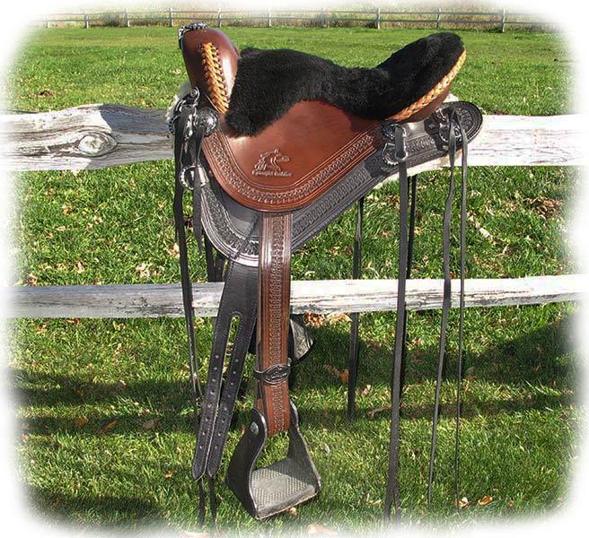 Custom Designed Saddle