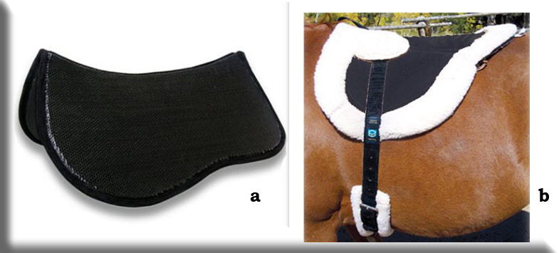 Supracor endurance and western Saddle Pad