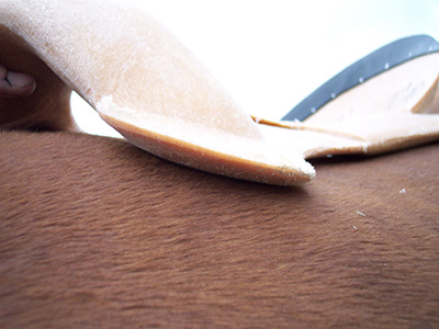 saddle fit and flare