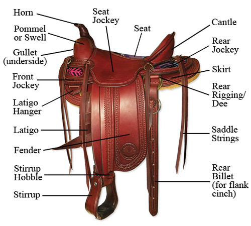 Parts of a Western Saddle