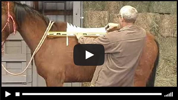 Semi Custom Trail Saddle Video